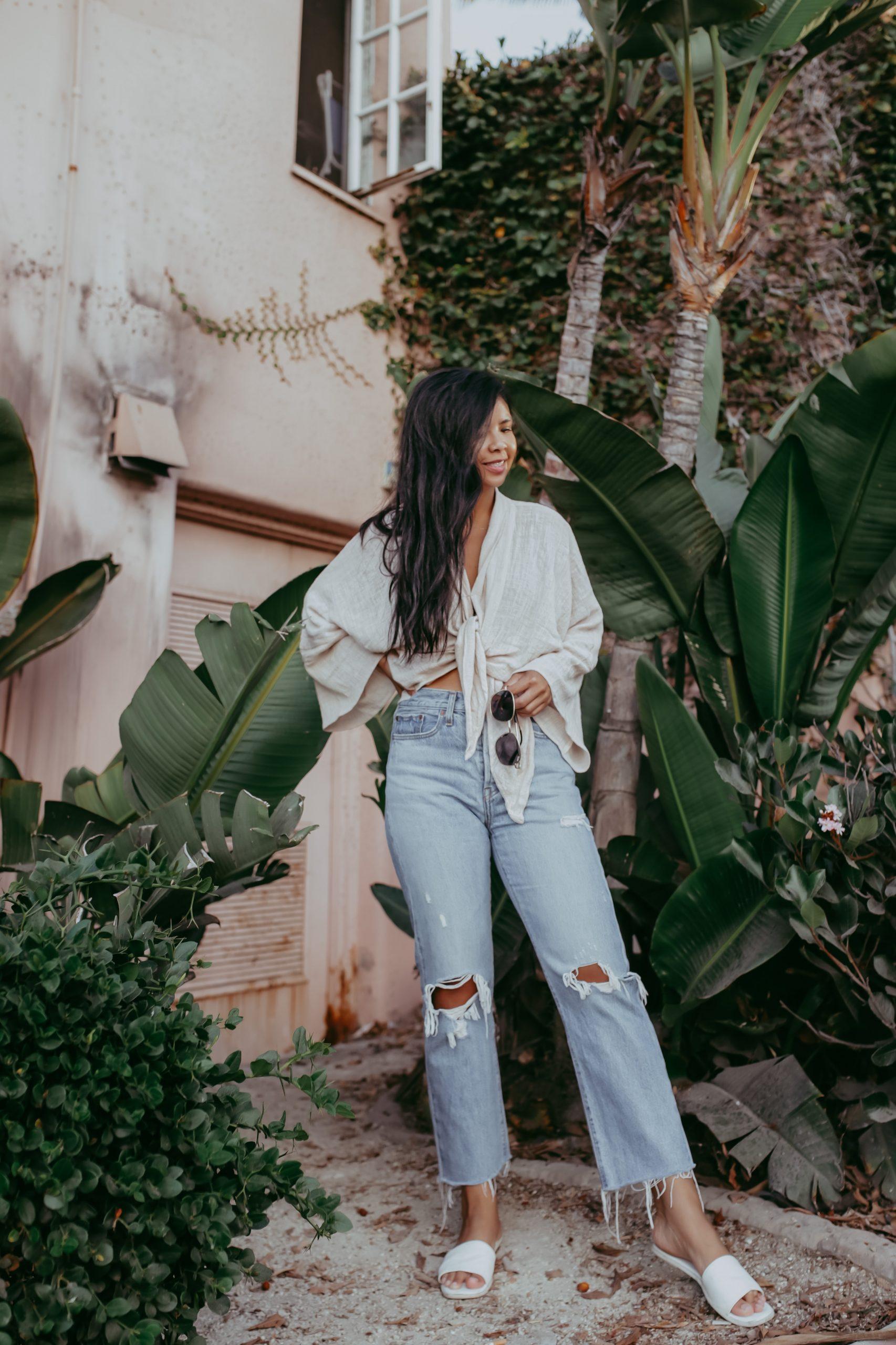 San Diego Palm Trees Blogger